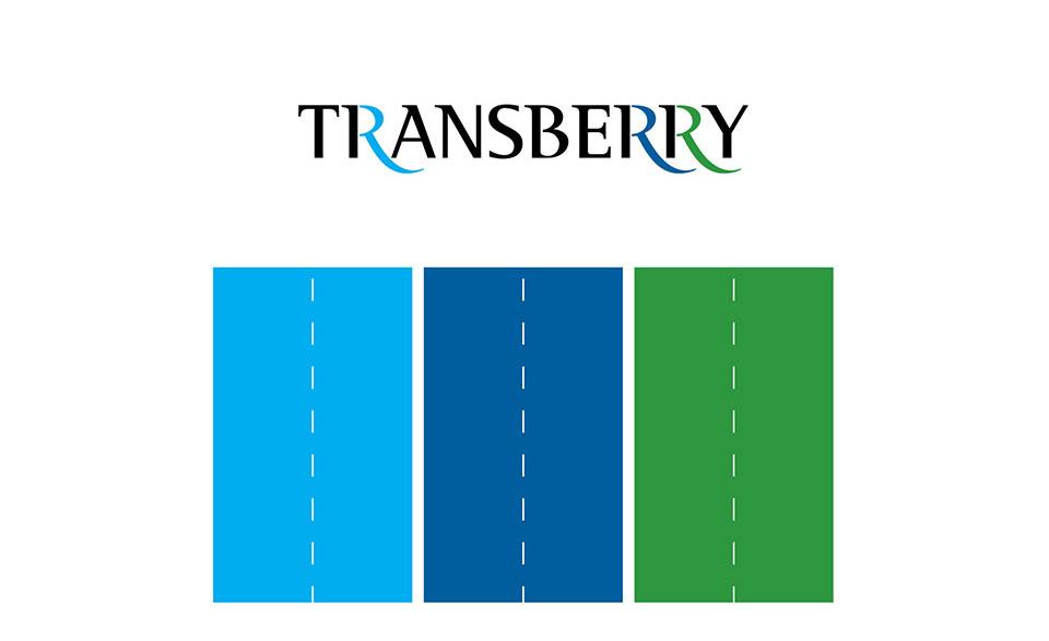 Разработка названия и логотипа логистической компании